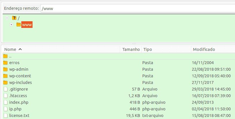 Pasta www no FTP do seu site