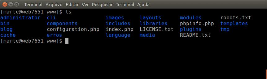 Aqui é mostrado o comando ls. Como resultado temos a listagem de arquivos e diretórios.
