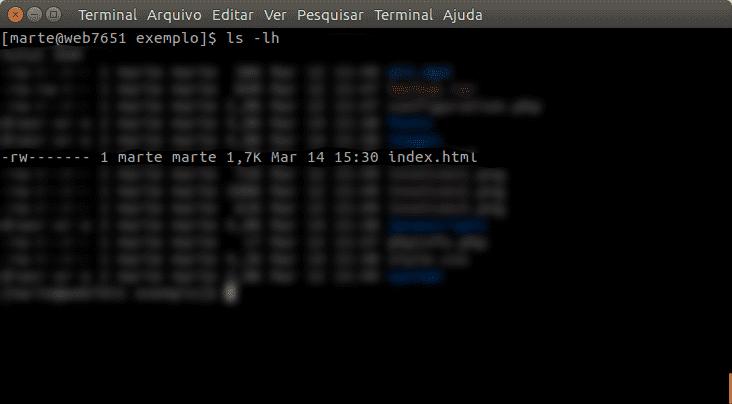 Aqui é exibido a listagem de conteúdo através do terminal linux, e há um destaque para o arquivo index.html que tem apenas permissão de leitura e escrita para o dono.